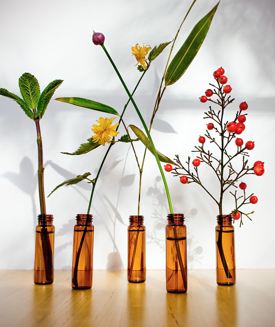 Peter Hoang & Nerissa Goco : Glass Pill Bottle Mini Centerpiece