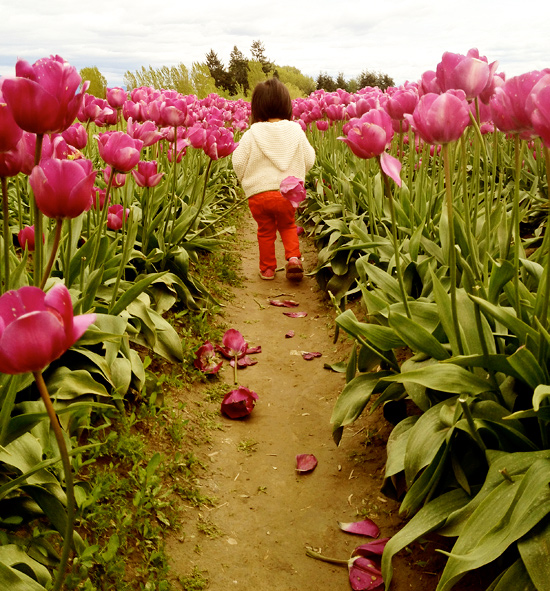 Peter Hoang & Nerissa Goco : Tulips Everywhere