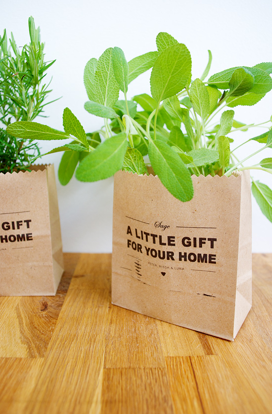 Peter Hoang & Nerissa Goco : DIY Garden Starter Gift Bags