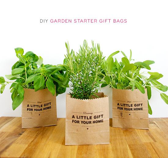 DIY Garden Starter Seedling Gift Bags